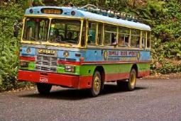 autobus bob marley