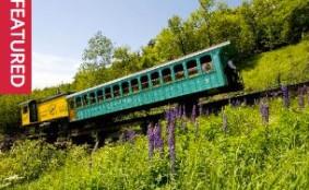 portland washington tren cog